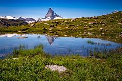 A9904958_s (AndiP66) Tags: blau matterhorn tümpel pond spiegelung reflection blauherd sunnegga zermatt alpen alps berge mountains wallis valais schweiz switzerland sony alpha sonyalpha 99markii 99ii 99m2 a99ii ilca99m2 slta99ii sigma sigma24105mmf4dghsmart sigma24105mm 24105mm art amount andreaspeters