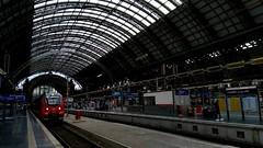 lass uns gehen! - let's go! (oriana.italy) Tags: frankfurtammain deutschland hauptbahnhof centralstation reise trip letsgo stationplatform orianaitaly