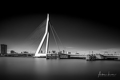 Erasmus Bridge in BW I (Alec Lux) Tags: bw bnw rotterdam architecture art black blackandwhite bridge canal city cityscape erasmus exterior fine fineart haida haidafilters harbour longexposure netherlands outdoor outside skyline urban water white
