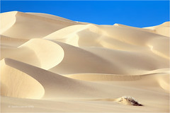 Imperial Sand Dunes (Sandra Lipproß) Tags: imperialsanddunes algodonesdunes desert desertscape sand dunes sky blue california usa westcoast travel landscape nature outdoor outside tatooine