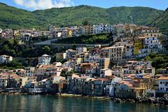 Chianalea, La Venezia del Sud. (Valentina Nappini) Tags: scilla calabria italy mare colori case verde nikon d3200