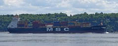 MSC Mediterranean - IMO 9102710 (J. Trempe 3,990 K hits - Merci-Thanks) Tags: stefoy quebec canada ship navire fleuve river stlaurent stlawrence conteneur container msc mediterranean