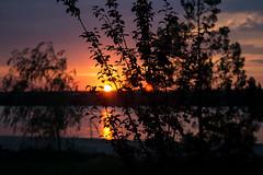 IMG_8508 (ValeriyK82) Tags: закат лето небо море sunset природа вечер красота отдых облака sky summer лето2019 фото солнце nature отпуск russia пейзаж красиво пляж photo photography россия sunsets sunsetmadness sunrise sunrisesunsetsaroundworld sun skyporn cloudporn horizon night morning warm view pretty beautiful vision photooftheday beauty amazing hot instasky allsunsets солнцесветит жизньпрекрасна вид рассвет рассветы рассветызакаты закаты закатсолнца закатырассветы valeriykolomoets kolomoetsphoto валерийколомоец valeriyphoto kolomoets fells clouds path