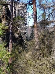 Eibenstein (michael pollak) Tags: ausflug drosendorf ruine eibenstein