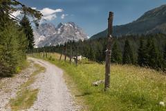 hot and sunny path (markus364) Tags: weg wege path trail alpen alps mountain austria berge österreich tirol tyrol natur outside outdoor hiking
