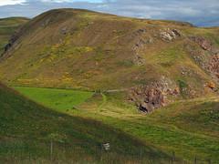 The path by kirk hill (Johnson Cameraface) Tags: 2019 june summer olympus omde1 em1 micro43 mzuiko 40150mm f40f56r johnsoncameraface stabbshead scotland naturereserve nationaltrustforscotland walking holiday