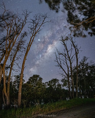 Attractive force (nightscapades) Tags: astronomy astrophotography australia autopanopro bolong galacticcore jupiter milkyway nature night nightscapes nowra pano panorama panos saturn science shoalhaven sky southcoastnsw stars stitch newsouthwales