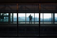 台中 臺灣  Taichung, Taiwan (不著邊際的過路人) Tags: color streetphotography candid human people silhouette composition lines glass city urban 人文 街頭攝影 對比 線條 剪影 城市 紀實