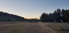 Sunset (Rckr88) Tags: waterberggamepark limpopo southafrica waterberg game park south africa sunset sunsets green greenery sky skies tree trees nature outdoors travel