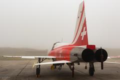 _DSC0005.jpg (Mr_White33) Tags: cazaux france swissaerobaticteam meetingdelair f5 swissairforce meetingaérien voltige aerobatic airshow patrouillesuisse aquitaine f5etigerii gironde meeting