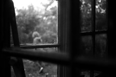 Windows (Nikon F80) (stefankamert) Tags: film analog grain windows mood mysterious noiretblanc noir blackandwhite blackwhite nikon f80 voigtländer ultron ilford hp5 bw people blur blurry stefankamert 1218