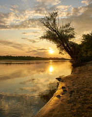 Vistula Sunset (radkuch.13) Tags: sunset sky sun tree water river sand europe sony poland warsaw warszawa tarchomin wisła vistula sonyalpha a7rii golden