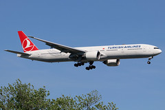 "TC-JJJ | Boeing 777-3F2ER | Turkish Airlines ""Erzurum"" (cv880m) Tags: newyork jfk kjfk kennedy johnfkennedy aviation airliner airline aircraft airplane jetliner airport spotting planespotting tcjjj boeing 777 773 777300 7773f2 turkish turkishairlines erzurum thy turkhavayollari"
