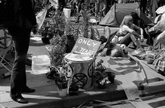 roll781_28 (redspotted) Tags: extinctionrebellion film kentmere400 leicam6 leicasummicron50mmf2type3 posttoflickr protest roll781 scan