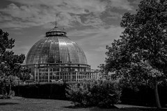 Belle Isle Conservatory (Tony Rich Photography) Tags: michigan belleisle gem emerald statepark