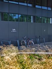Damka (JanPieniadz) Tags: bike cracow office commuting bicycle grass yello grey dark