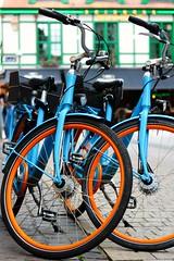 Rue du Mouton Blanc (Liège 2019) (LiveFromLiege) Tags: liège luik wallonie belgique architecture liege lüttich liegi lieja belgium europe city visitezliège visitliege urban belgien belgie belgio リエージュ льеж vélo velo bike bikes vélos velos bluebike bluebikes 50mm
