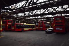 52 YN58BCF, 681 YN57FYL & 683 YN57FVE (Ary_Art) Tags: brightonandhove brightonandhovebuses