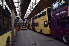 129 BL57OXN, 431 BF12KXG & 433 BF12KXL (Ary_Art) Tags: brightonandhove brightonandhovebuses