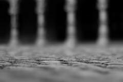 Palais des Princes-Évêques (Liège 2019) (LiveFromLiege) Tags: liège luik wallonie belgique architecture liege lüttich liegi lieja belgium europe city visitezliège visitliege urban belgien belgie belgio リエージュ льеж noirblanc noiretblanc blackandwhite blackwhite bnw bw black white noir blanc palaisdesprinceseveques palais des princes évêques princebishopspalace 50mm