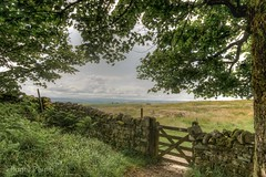 HADRIANS WALL_ HDR_DSC_6376_LR_2.5And2more_tonemapped_LR_2.5-2 (Roger Perriss) Tags: 2019 northumberland hadrianswall holiday d750 gate wall gateway wood trees vista hadrian romanwall boundary boundarywall