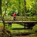 Lindo parque em Bergen