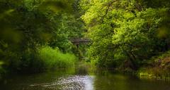 Bridge (http://www.paradoxdesign.nl) Tags: annashoeve hilversum goois natuurreservaat nederland netherlands holland dutch water river pond reflection brug trees landscape nature