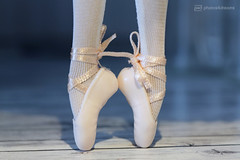 my pointe ! (photos4dreams) Tags: mistycopeland nutcracker dress barbie mattel doll toy photos4dreams p4d photos4dreamz barbies girl play fashion fashionistas outfit kleider mode puppenstube tabletopphotography bilitis hamilton soft focus ballett ballet dancer dancers tänzerinnen tänzerin ballerina star primal diorama aa beauties beautiful girls women ladies damen weiblich female firstafricanamericanfemaleprincipaldancerwiththeprestigiousamericanballettheatre principaldancer primaballerina firebird feuervogel phoenix prince purple rain hispurplehighness afroamerican darkskin africanamerican barbiefrn76 signaturedisney dernussknackerunddievierreicheballerinaderkönigreichepuppe