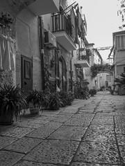 Scorcio di Bari vecchia (Alino1891) Tags: blackandwhite vicolo puglia bari barivecchia bw italy italia oldtown tradizioni