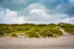 Rastplatz in der Düne (Til..) Tags: nikon d7100 tamron tamron70200mmg2 strand föhr nieblum urlaub nordsee nikond7100 sand rastplatz parkbank bank düne übergang strandhafer