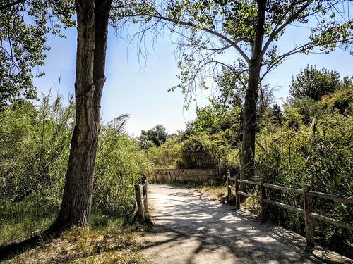 Camino hacia la Cueva Turche de Buñol - Valencia