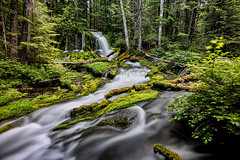 Big Spring Creek Falls (AjaRai) Tags: bigspringcreekfalls skamaniacounty washington