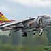 Spanish Navy EAV-8B Harrier II 01-925