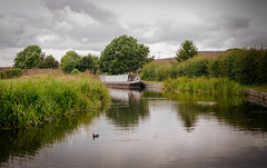 Downstream (jphowley12) Tags: river riverbank barge water grass outside trees summercoludy countryside uk nottinghamshire nikon7000
