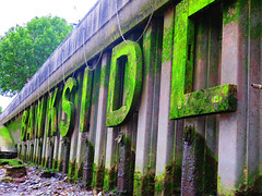 Bankside (stevem458) Tags: london england thames river cityscape canon southbank riverbank docklands letters moss sexy rust abandoned green