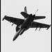 DEPARTING GROWLER IN MONOCHROME WITH TAILHOOK DOWN