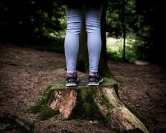 Stood on a Stump (Mark Stinchon Photography) Tags: forest greenery deadwood isolation legs remoteplace scary standing still treephotography treestump whitetree