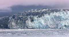 Face of the Hubbard Glacier, Alaska. USA. (3.3 mil views - Thank you all.) Tags: alaska unitedstatesofamerica usa staneastwood stanleyeastwood hubbardglacier glacier ice glacial sea water