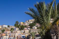 Rhodes-6910 (Andy Kaye) Tags: greece rhodes rodos greek symi simi island