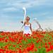 Poppies # 04