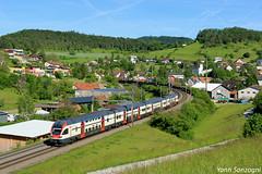 Duplex helvéthique (Lion de Belfort) Tags: rabe 511 113 chemin de fer train jura suisse sbb cff ffs automotrice zeihen bözberg laufenburg aargau argovie schweiz alpes montagne ir interregio regio inter