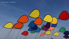 festival vent pléneuf val andré 2019 (pascal3592) Tags: festival vent pléneufvalandré cerfvolant
