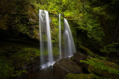 A Day's Reward (Michael Bollino) Tags: waterfall falls spring green forest bushwhack creek nature outside adventure