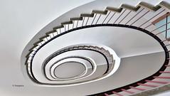 Hamburg Stairs Detjenhaus (petra.foto busy busy busy) Tags: hamburg hansestadt germany architektur treppenhaus kontorhaus stairs treppe treppenauge treppengeländer schnecke vonunten fotopetra canon eosrp