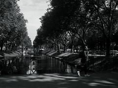 summer high noon@Kö-Graben, Düsseldorf 2 (Amselchen) Tags: city street streetphotography streetsnap people pedestrians bnw blackandwhite light shadow mono monochrome panasonic germany citylife urban season summer lmonochromed panasonicdcgx9 lumixgvario1232f3556