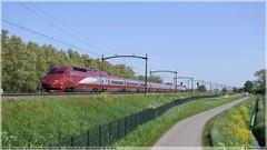 SNCF 4536 | Willemsdorp | 24-04-2019 (DDZ 7504) Tags: hst hogesnelheidstrein thalys sncf nsinternational nsi sncb nmbs 4536 9328 dordrecht willemsdorp omleiding brabantroute amsterdam parijs parisnord alstom alsthom pba tgv 24042019