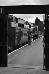 SVR 13th July 2019 (Martin Creese) Tags: