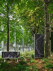 Symbiosia de T. Biersteker (Fondation Cartier, Paris) (dalbera) Tags: dalbera paris france fondationcartier artcontemporain arbres
