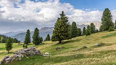 Weitere Eindrücke von der Geisleralm (jürgenmilnik) Tags: italien italia dolomiten dolomiti geisleralm geislergruppe geislerspitzen landschaft landscape nikon nikond7200