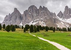 der Weg in die Berge (jürgenmilnik) Tags: italien italia dolomiten dolomiti geisleralm geislergruppe geislerspitzen landschaft landscape nikon nikond7200